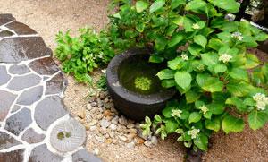 gardens_kininaru_16